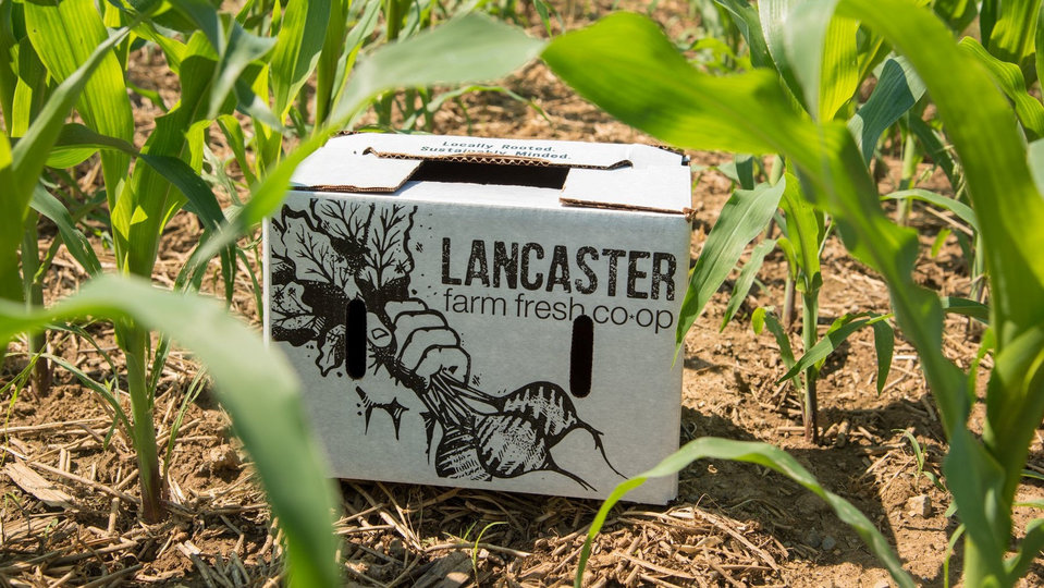 Lancaster Farm Fresh cover image