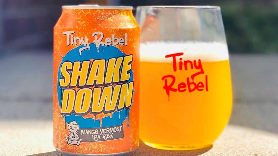 Tiny rebel cover image