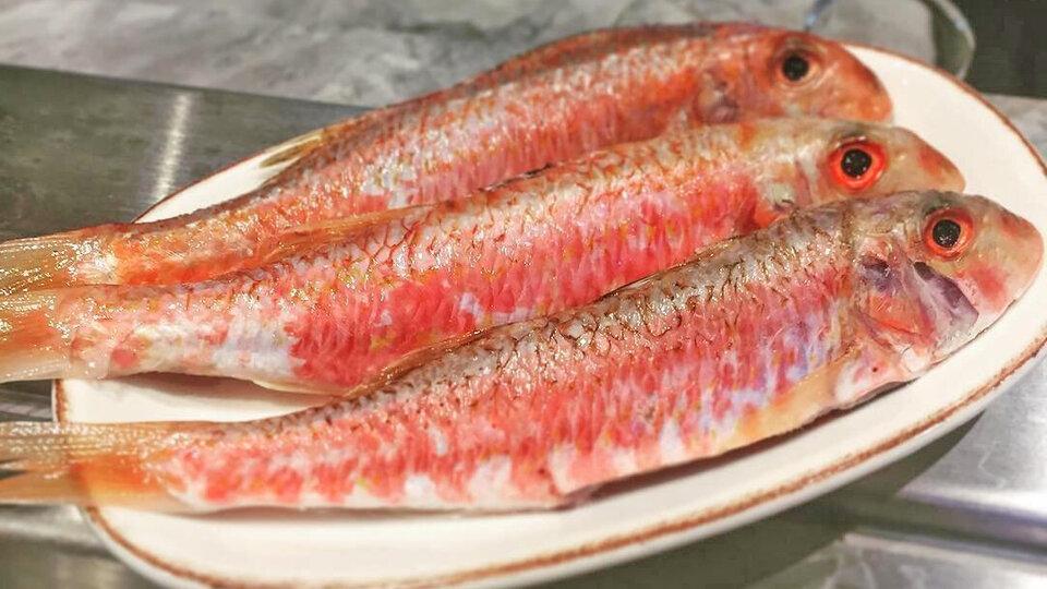 Barfoot Fish cover image