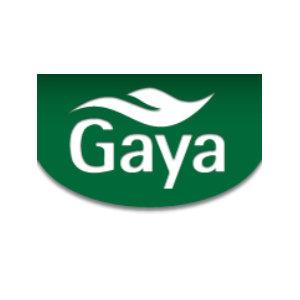 Gaya Foods logo image