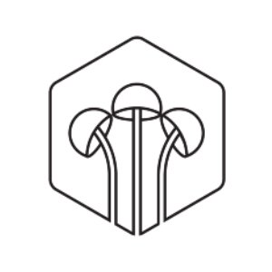 Fungtn logo image