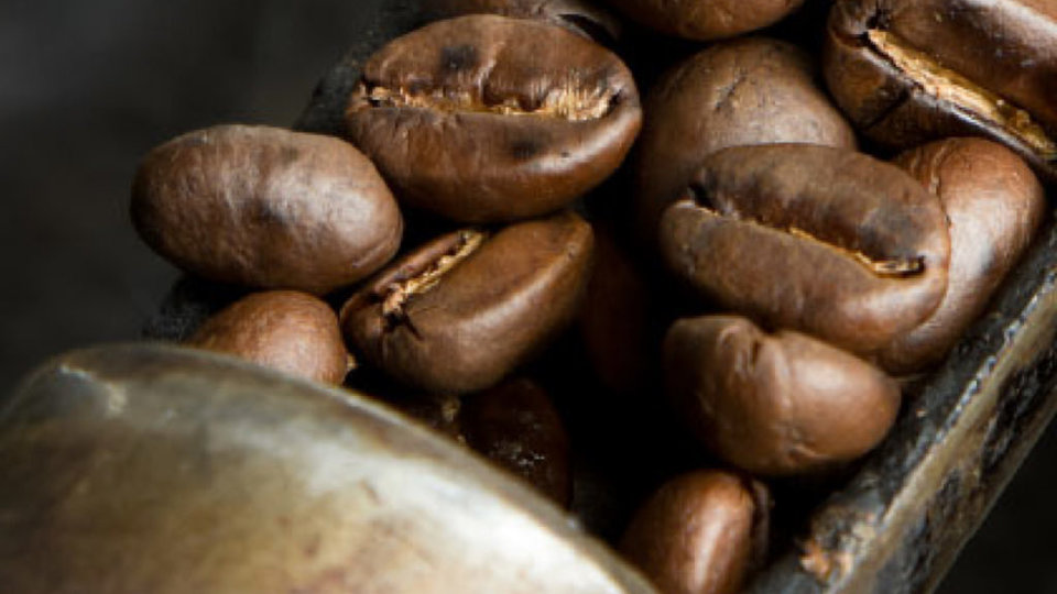 Abbotsford Road Coffee Specialists cover image