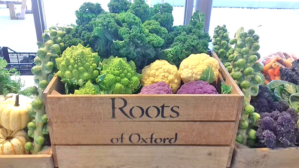 Roots of Oxford cover image