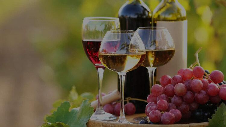 Venus Wine & Spirit Merchants PLC cover image