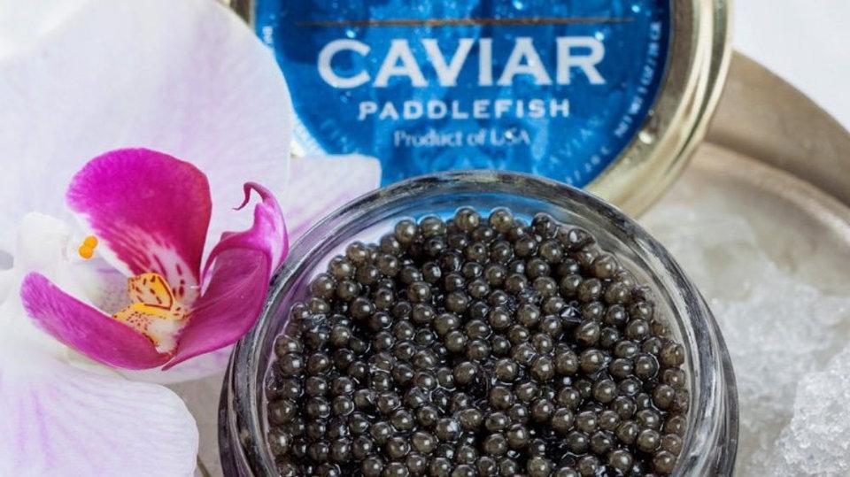 American Caviar cover image