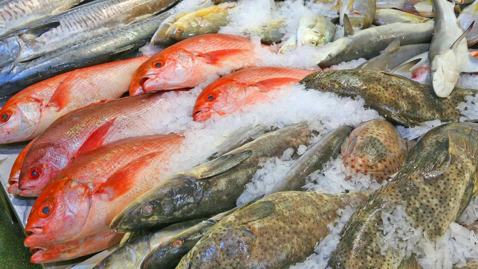 Moxon's Fishmongers cover image