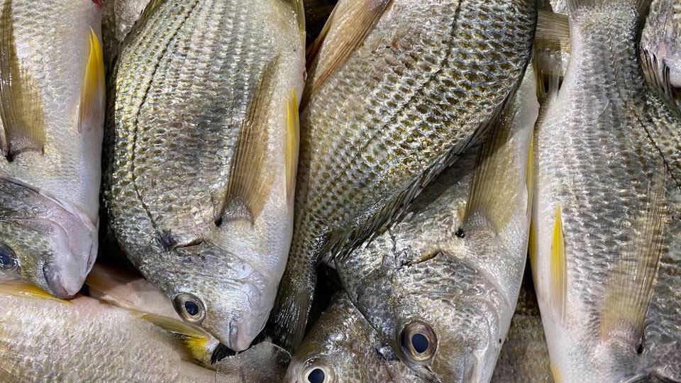 Yuga Seafood cover image