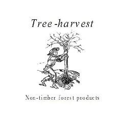 Tree Harvest logo image