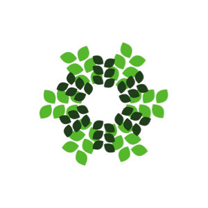 Rainforest Distribution logo image