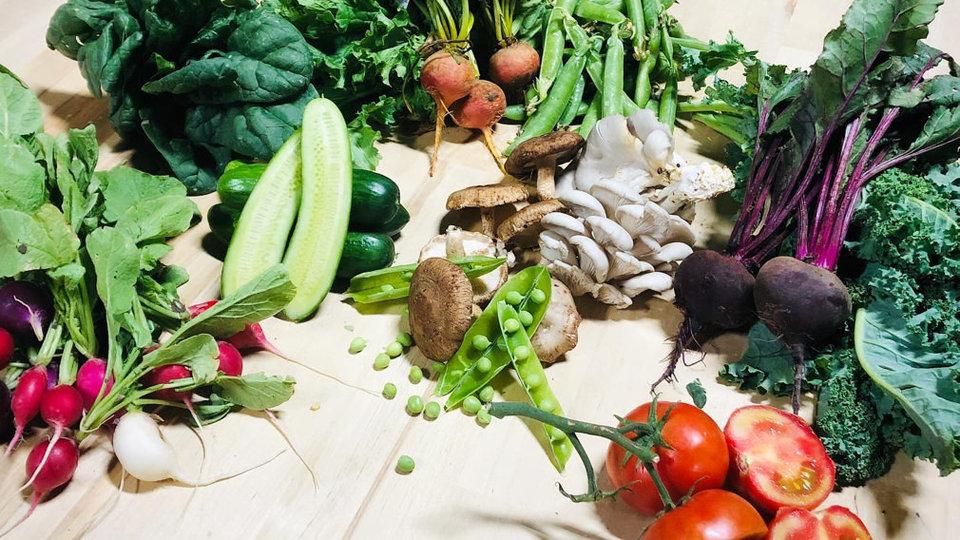 Altamira Foods cover image