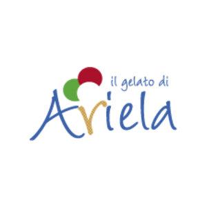 Il Gelato di Ariela logo image