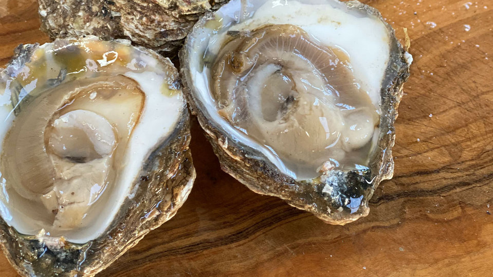 Rossmore Oysters cover image