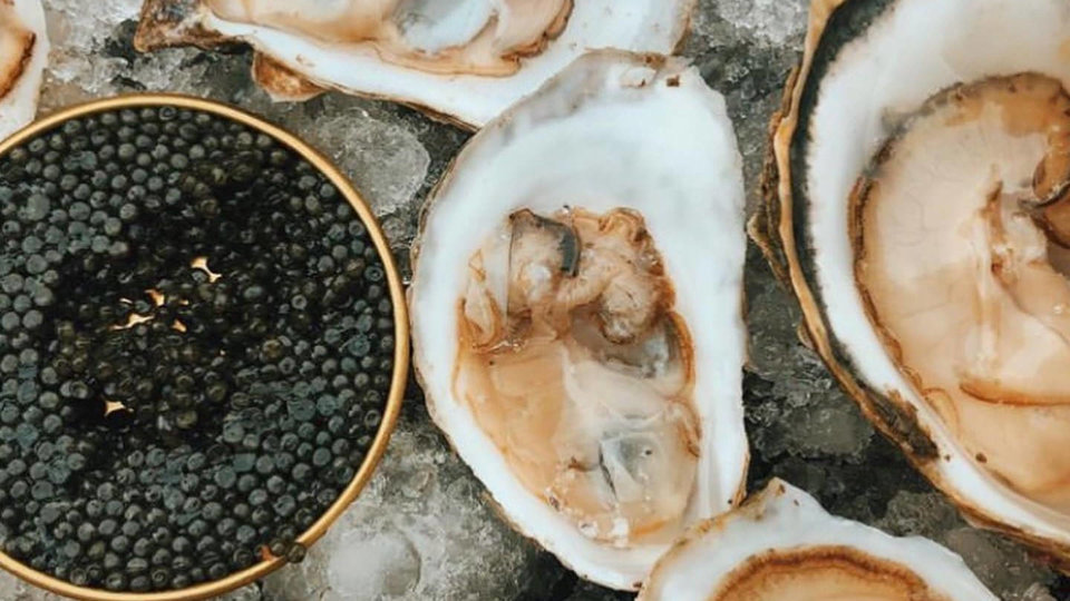 Island Creek Oysters cover image
