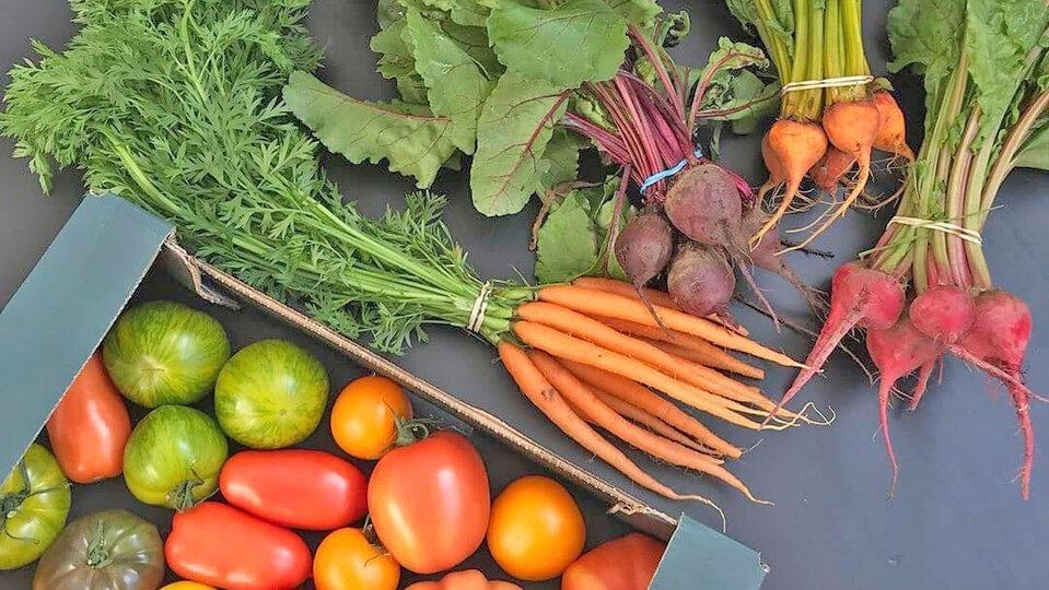 Anglia Produce cover image