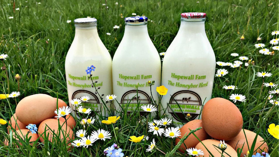 Hopewell Farm cover image