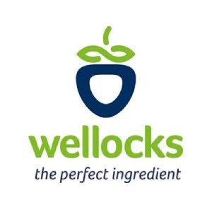 Wellocks logo image