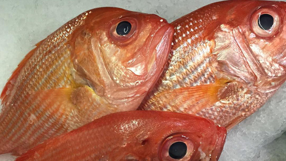 Seafood Merchants cover image