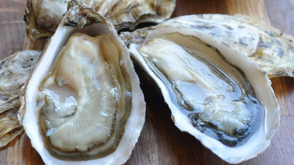Maldon Oysters cover image