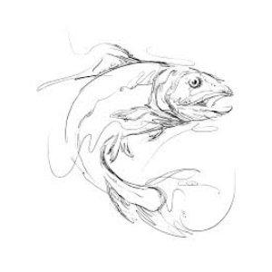 Rao Fish logo image