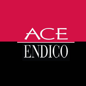 Ace Endico logo image
