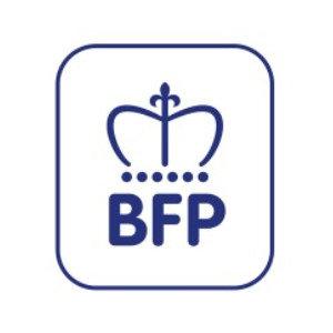 BFP Wholesale logo image