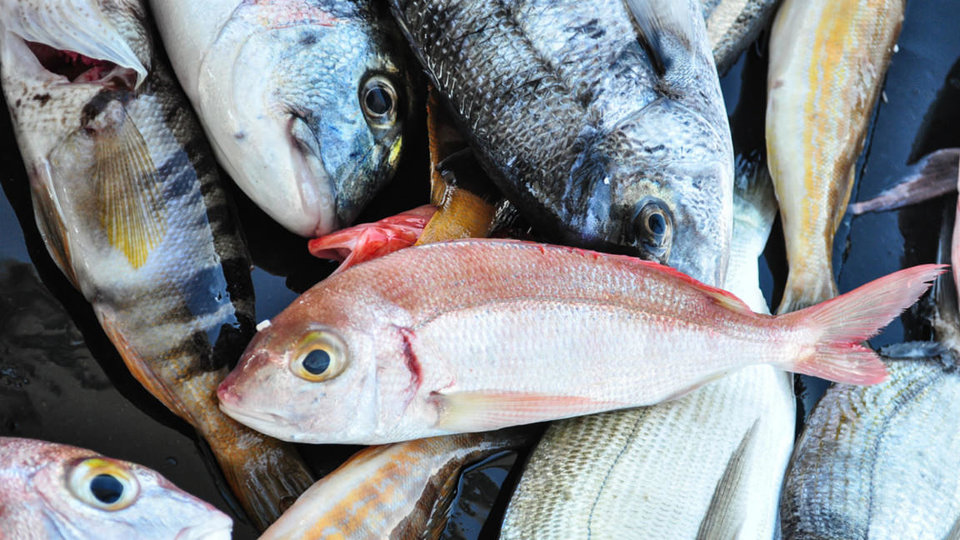 Hook and Line Seafoods cover image