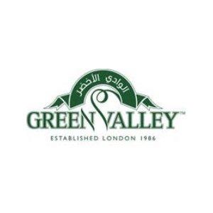 Green Valley logo image