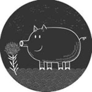 Peads & Barnetts logo image