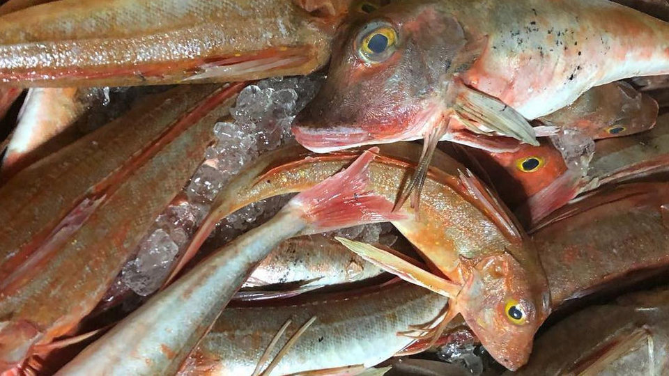 R Green Fisheries cover image