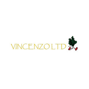 Vincenzo UK logo image