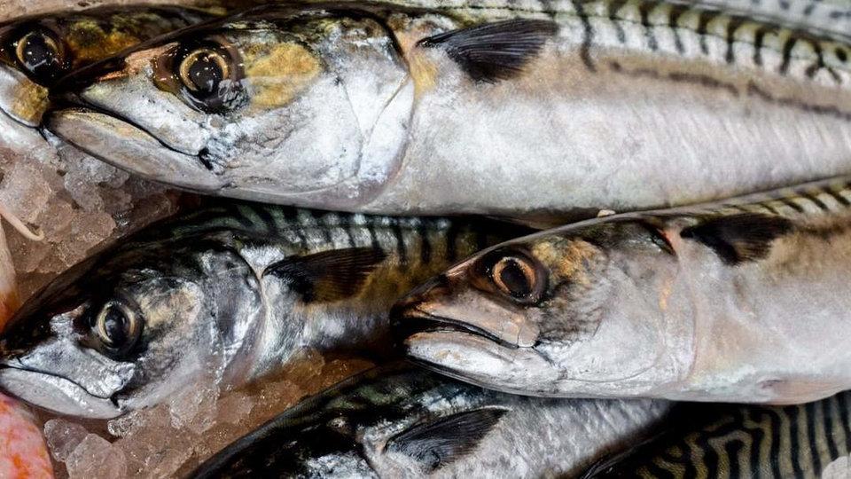 Sankeys Fishmongers cover image